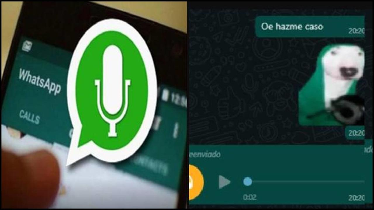 Sticker con sonidos en whatsapp