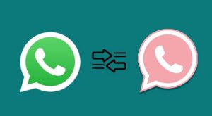 Whatsapp rosa